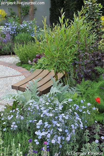 A modern Apothecary Garden (19).jpg