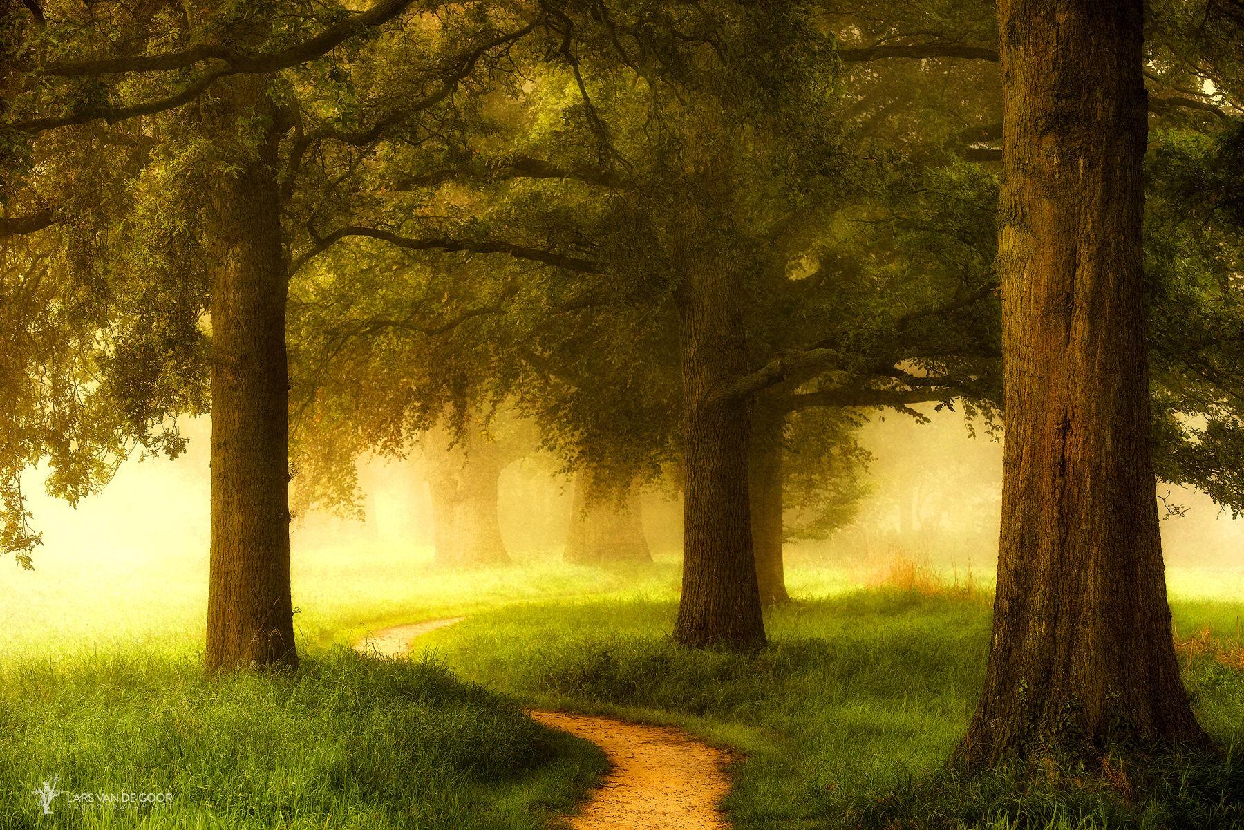 Path of Awekening