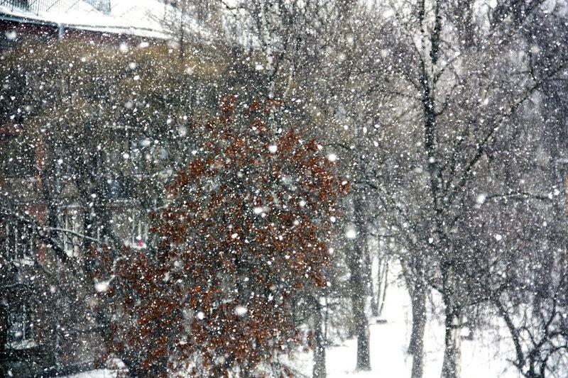 А у нас на улице снег