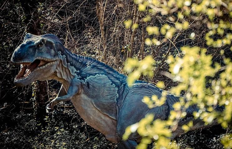 Учёные вИталии воссоздали вид старинного динозавра поотпечатку лапы