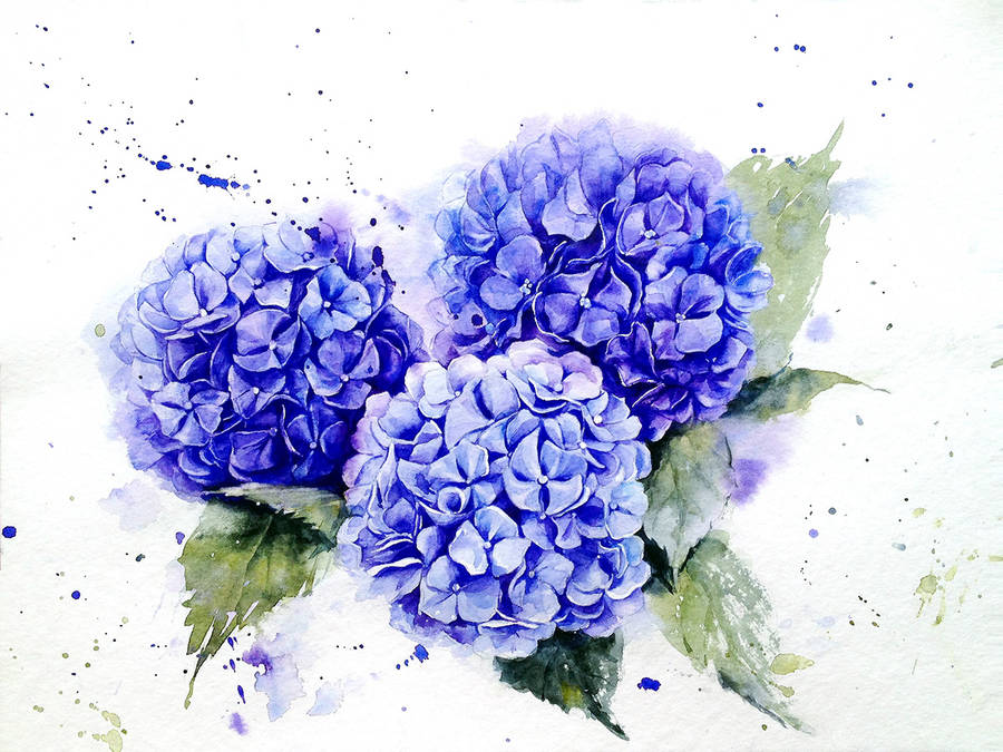 Poetic & Realistic Flowers Watercolor Paintings (8 pics)