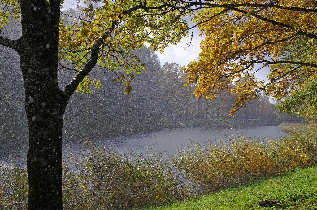 Запевала - дождь…