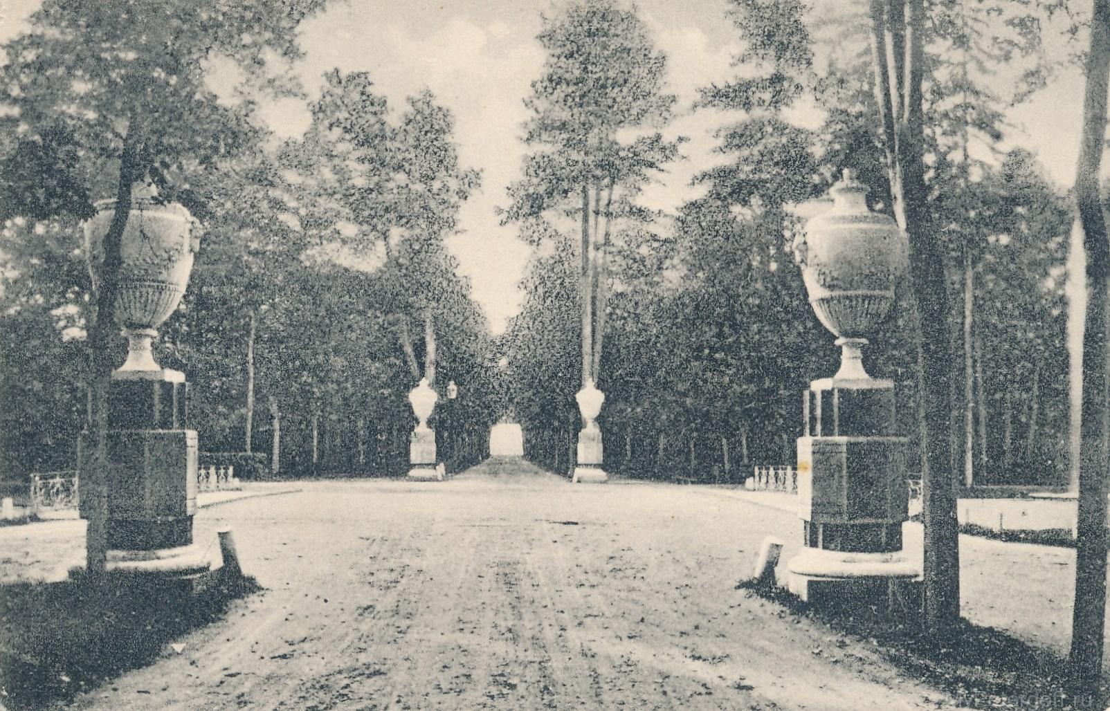 Главная аллея в нижнем парке