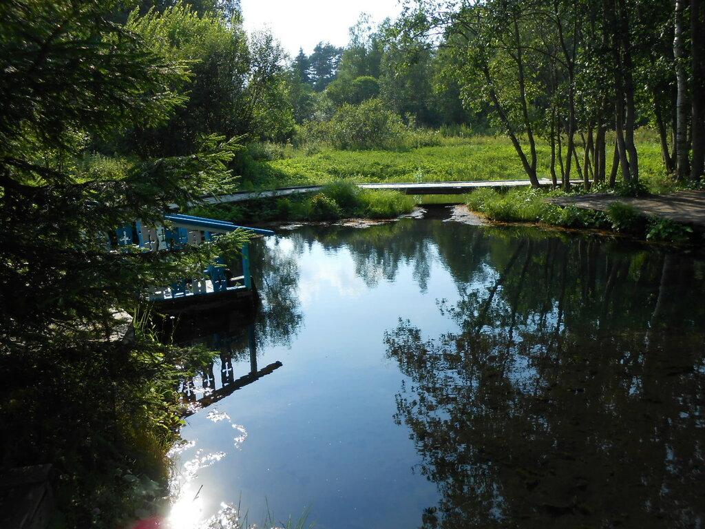 Серо-водородные источники близ деревни Мшенцы.