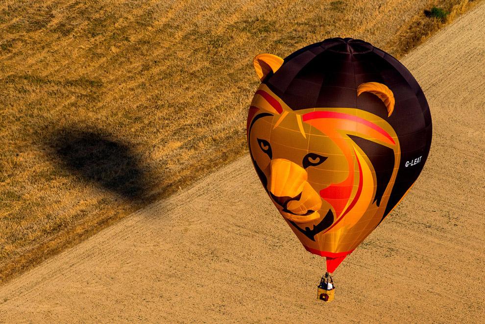 7. Любой желающий может прокатиться на воздушном шаре, вместе с пилотом. Многие зрители посещаю