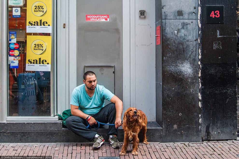 24. Ладно, завязываем рефлексировать и грустить. Все-таки Амстердам создан для веселья!