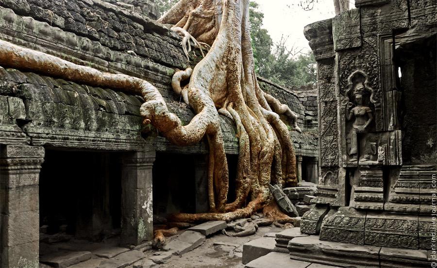 Оригинальная обработка с акцентом на дерево, необычный вариант. Для любителей фотографии на храмах р