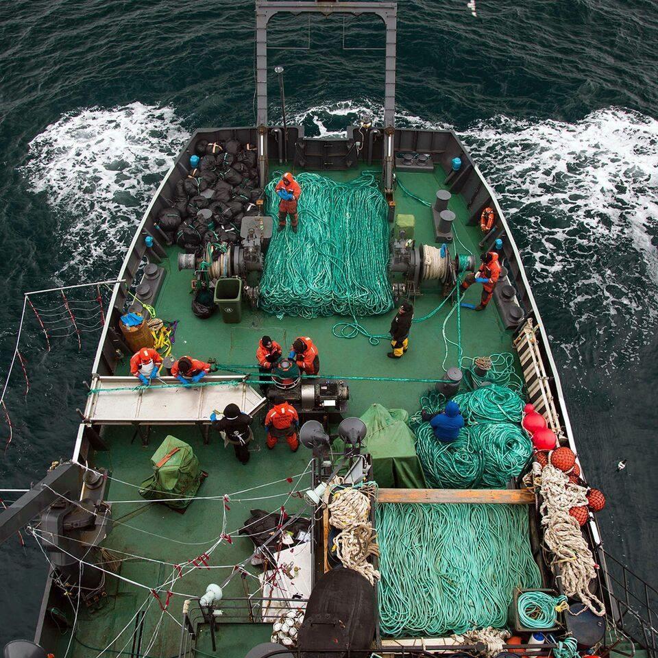 photo credit: Giacomo Giorigi / Sea Shepherd Global