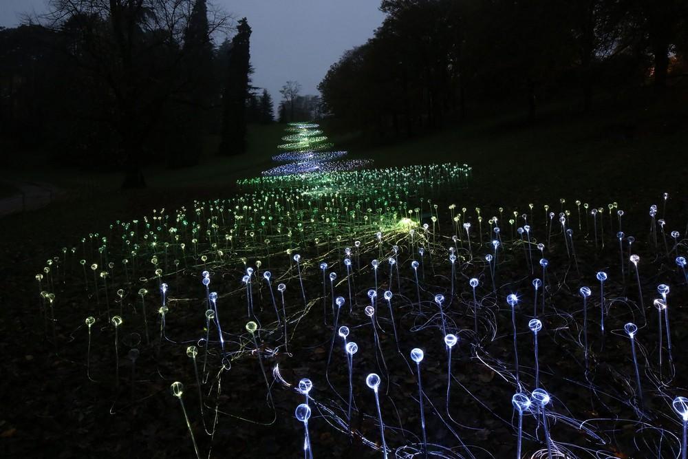 Удивительные световые инсталляции