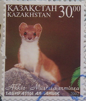 2002 № 387 Горностай Серия Жемчужины Казахстана Зайлийский Алатау – блок 30