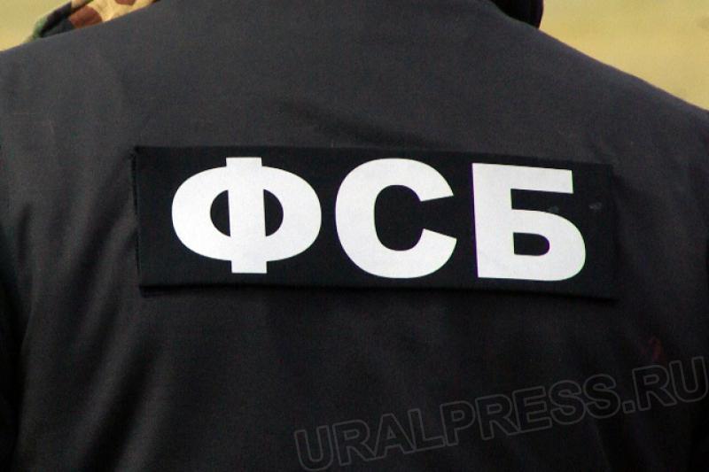 ВМагнитогорске футбольный поклонник наказан заразмещение неонацистских статей всети
