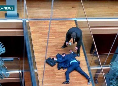 Британский депутат выпал изокна впроцессе потасовки вЕвропарламенте