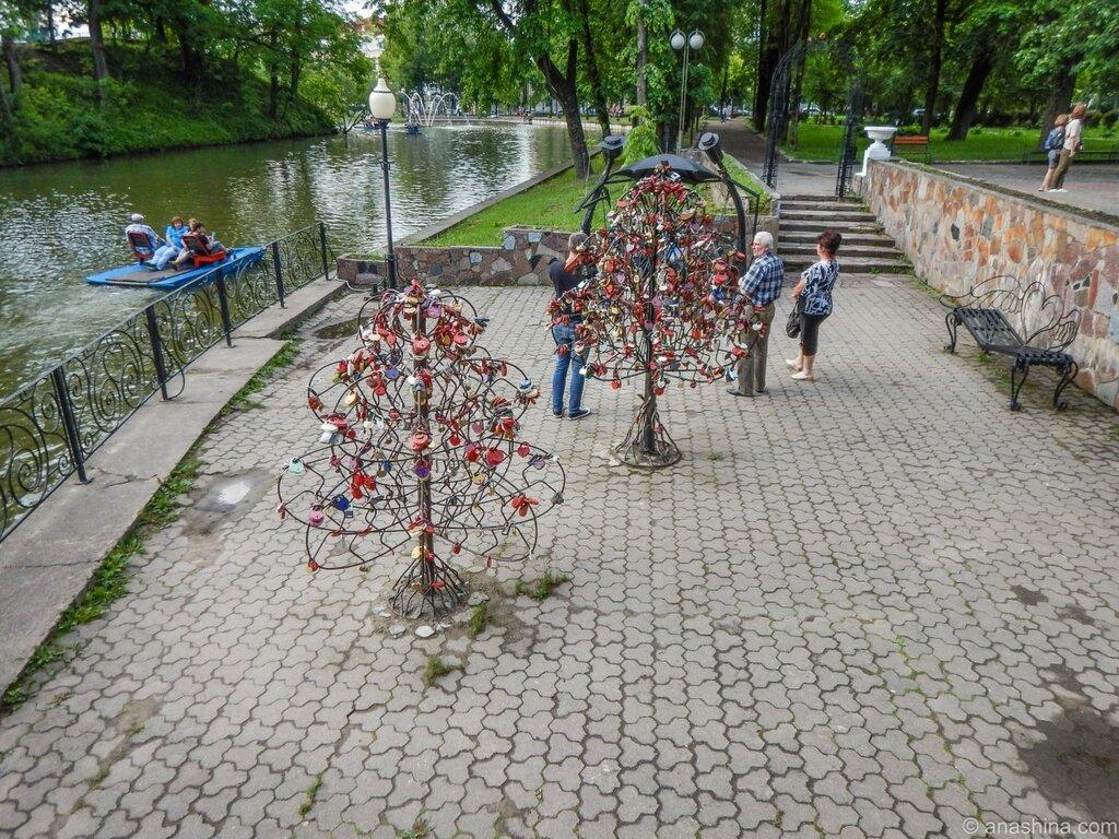 Деревья с замками молодоженов, Лопатинский сад, Смоленск