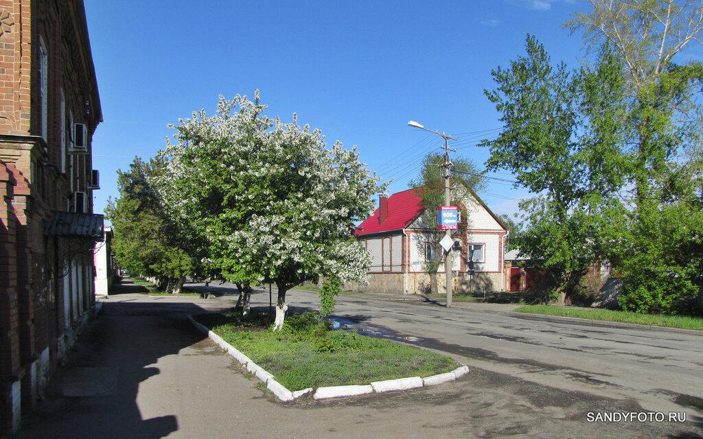 Цветущий Троицк — улицы города — часть шестая