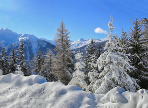 На фоне гор