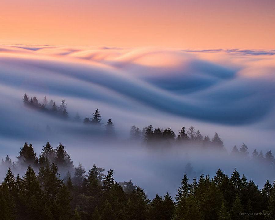 Потрясающие волны тумана