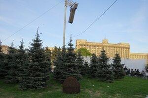 Интересные места и достопримечательности - Ели на Московской площади в Санкт-Петербурге
