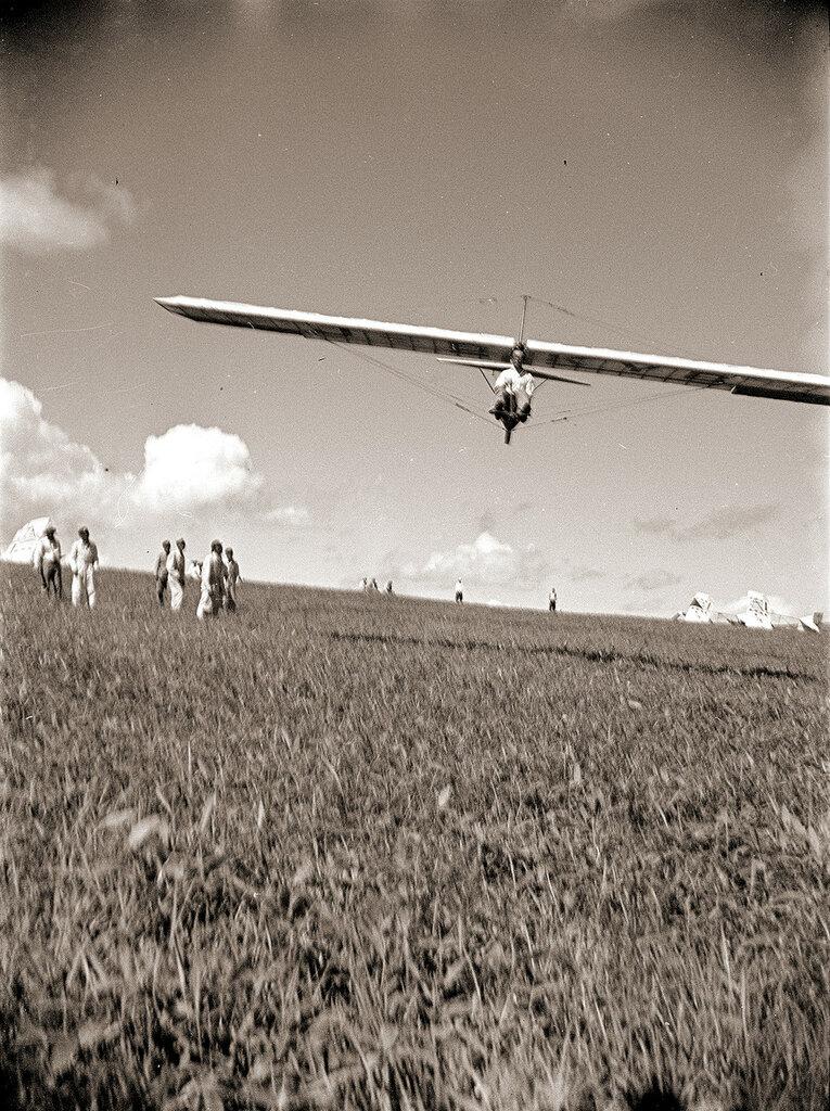R.F Dagnall Dagling Glider J-BKYB