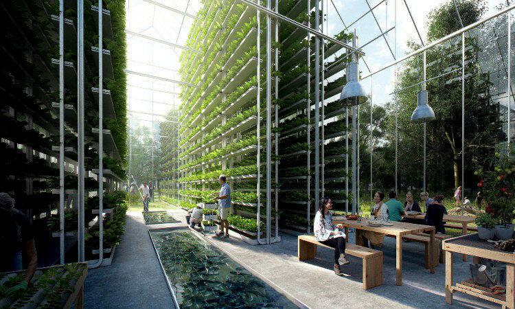 Будущее здесь: TESLA строит автономные колонии будущего в Нидерландах - фото 10