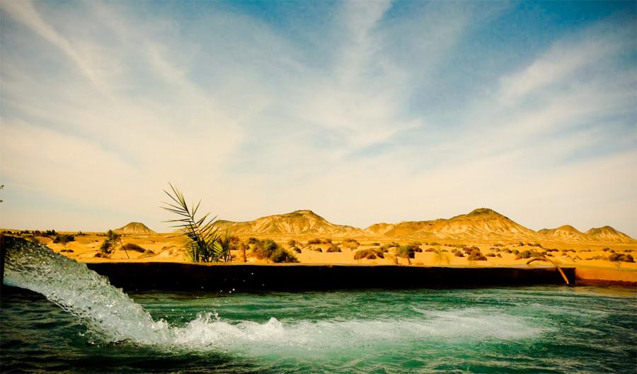 7. Древняя река Таманрассет была одной из самых длинных древних рек мира. Демоническая собака