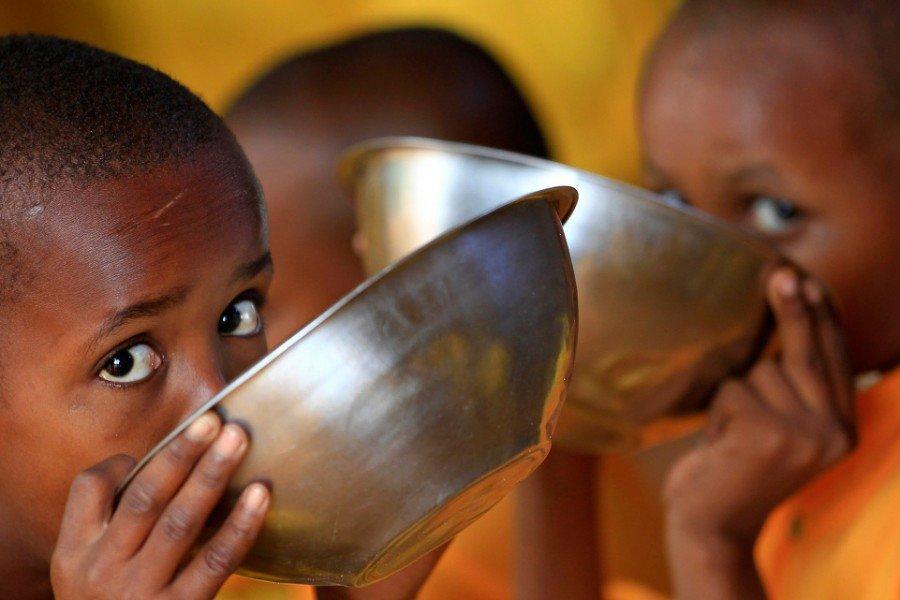 Как голод влияет наздоровье человека? —ответ профессионалов