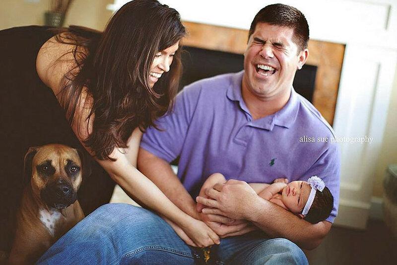 Папа смеется, мама ловит, выражение морды собаки объясняет все