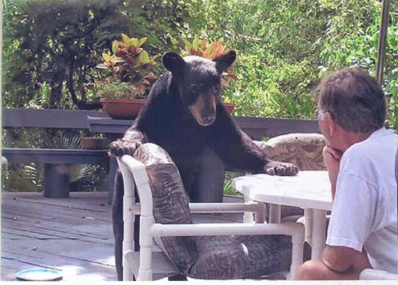 Ну что сидишь как не родной? Наливай.