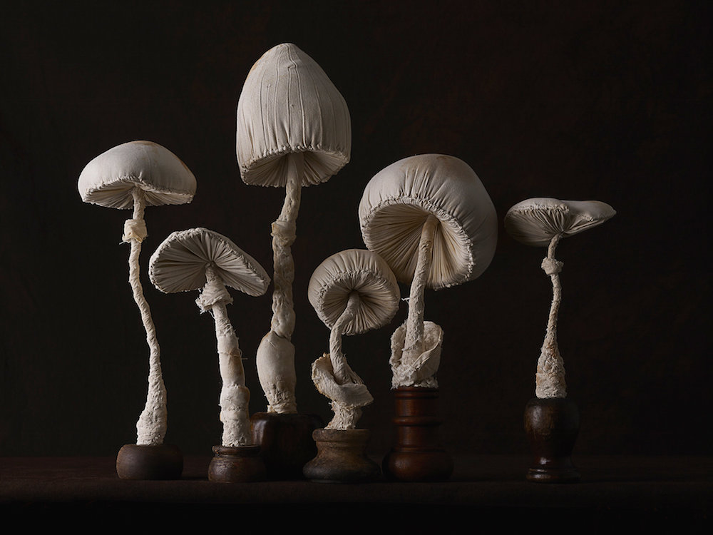 New Toadstool Sculptures Crafted From Vintage Textiles by Self-Taught Artist Mister Finch