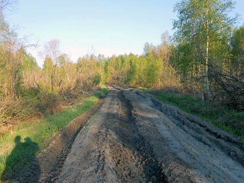 Глиняная дорога Тюменская область