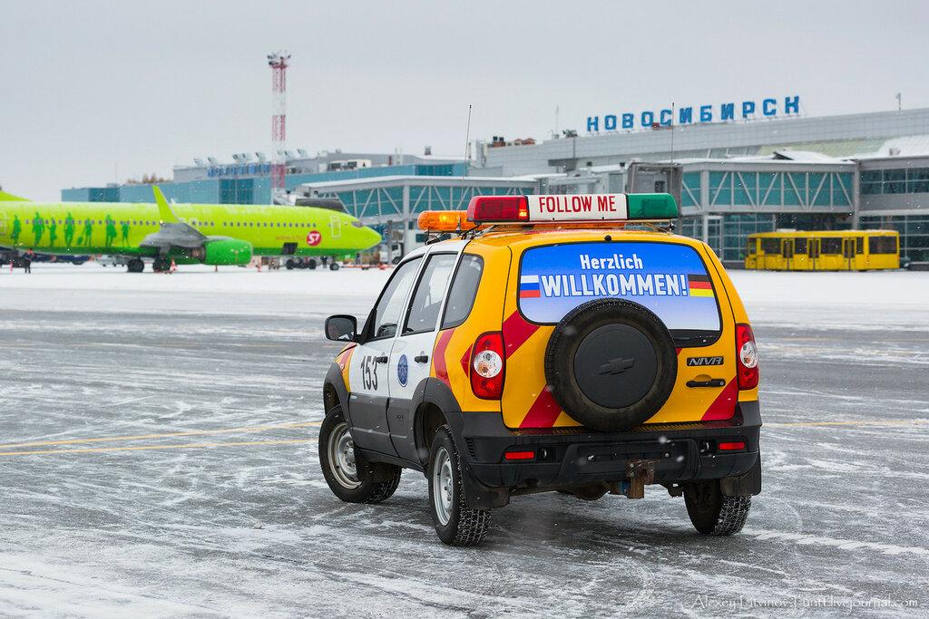 Lufthansa Cargo переходит в Толмачёво