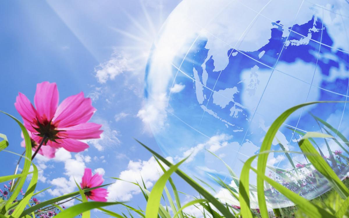 В мире отмечается День охраны окружающей среды открытки фото рисунки картинки поздравления