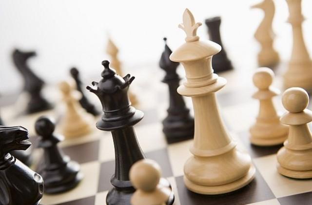 Международный день шахмат. 20 июля. Поздравляю