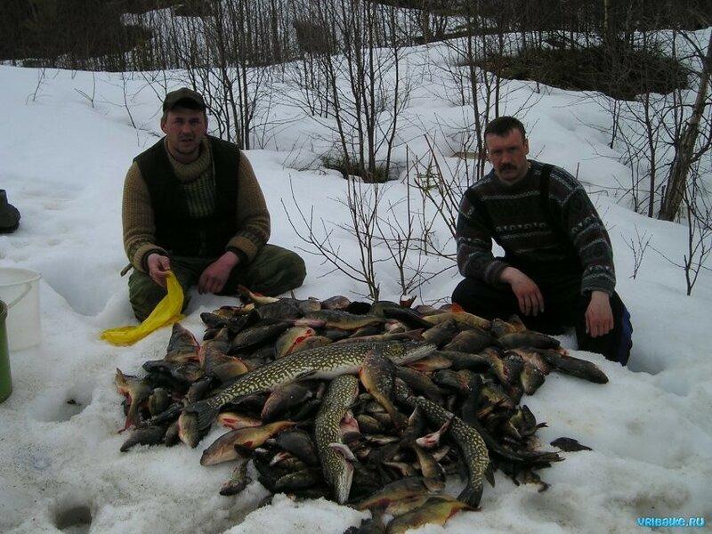зимняя рыбалка онлайн