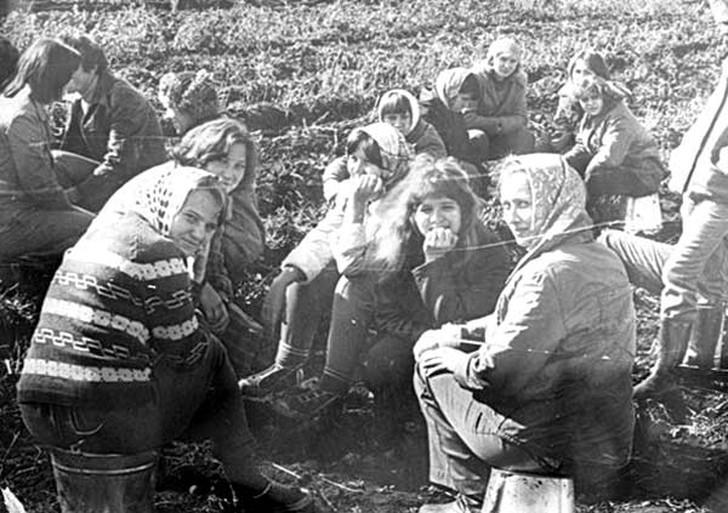13. Продолжение темы картошки — прекрасная половина на отдыхе в перерыве между сбором урожая. И снов