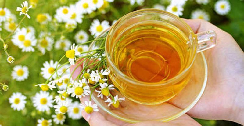 10. Ромашковый чай. Ромашка — мягкое противовоспалительное средство. В сочетании с липой и медом явл