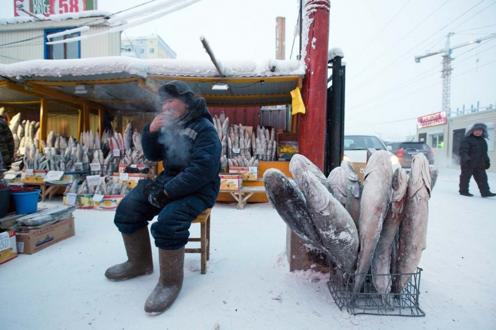 10леденящих фотографий Якутии вобычный зимний день (10 фото)