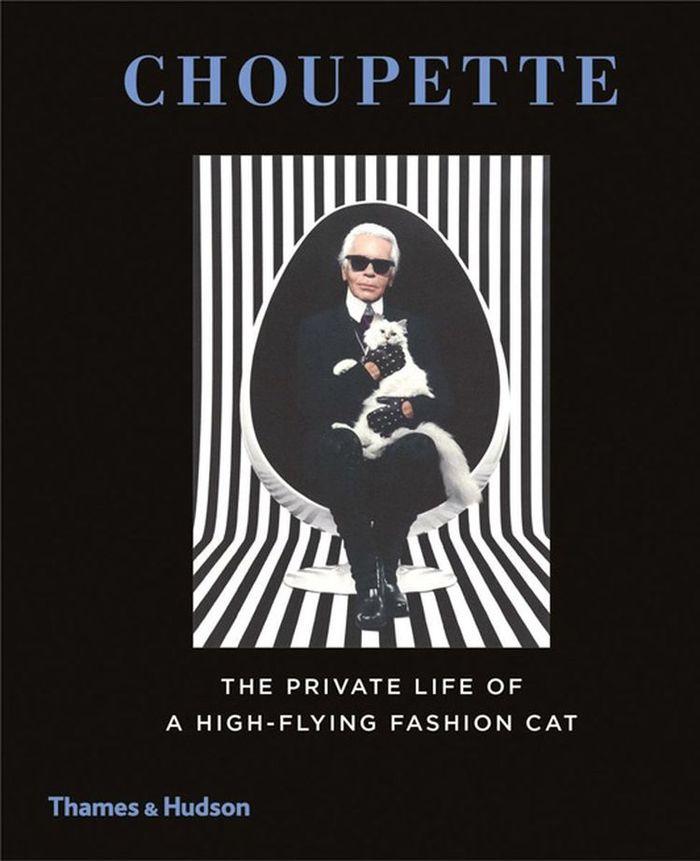 2. Впрочем, кошка модельера ведет себя под стать хозяину — по словам дизайнера, его малышка «ненавид