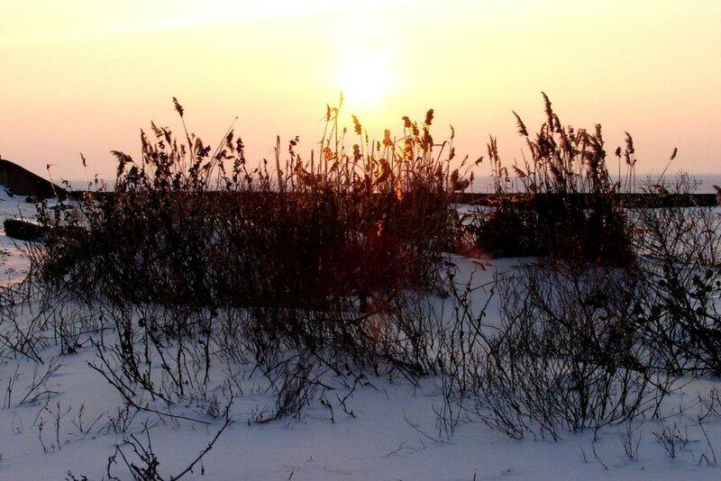 Зима 2010 006 ... фотограф Александр Улисский