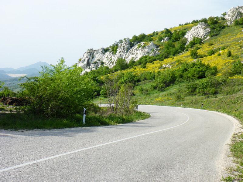 рготский камень пейзаж с желтыми цветами