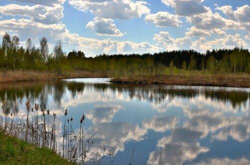 Весенние облака ...