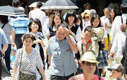 В Японии из-за жары пострадало более 688 человек