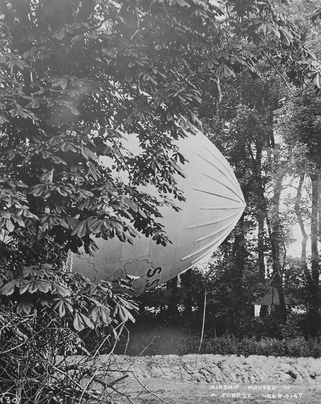 British Airship housed in a forest