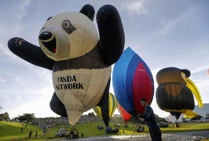 Фестиваль аэростатов на Тайване (14 фото)