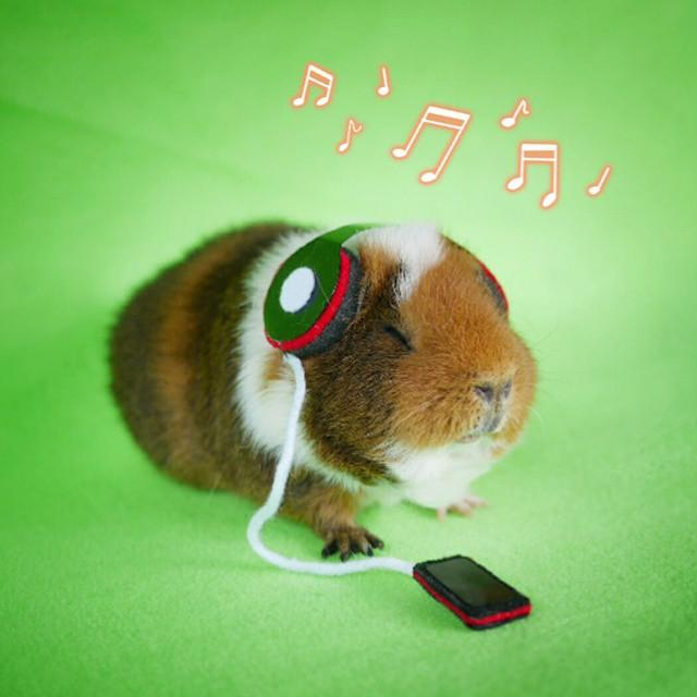9. Фаззберта слушает музыку, и похоже, ей это очень нравится!