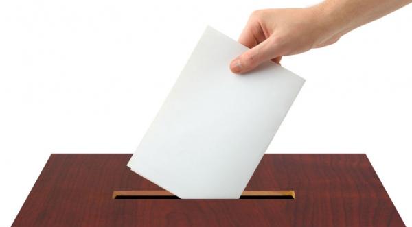 Треть липчан отдала голос к15:00