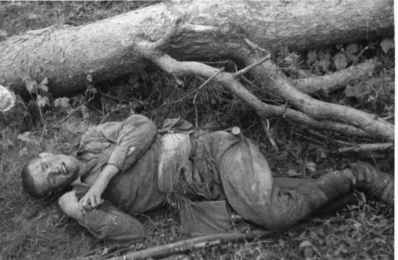 Красноармеец, погибший в Белоруссии. 41.jpg