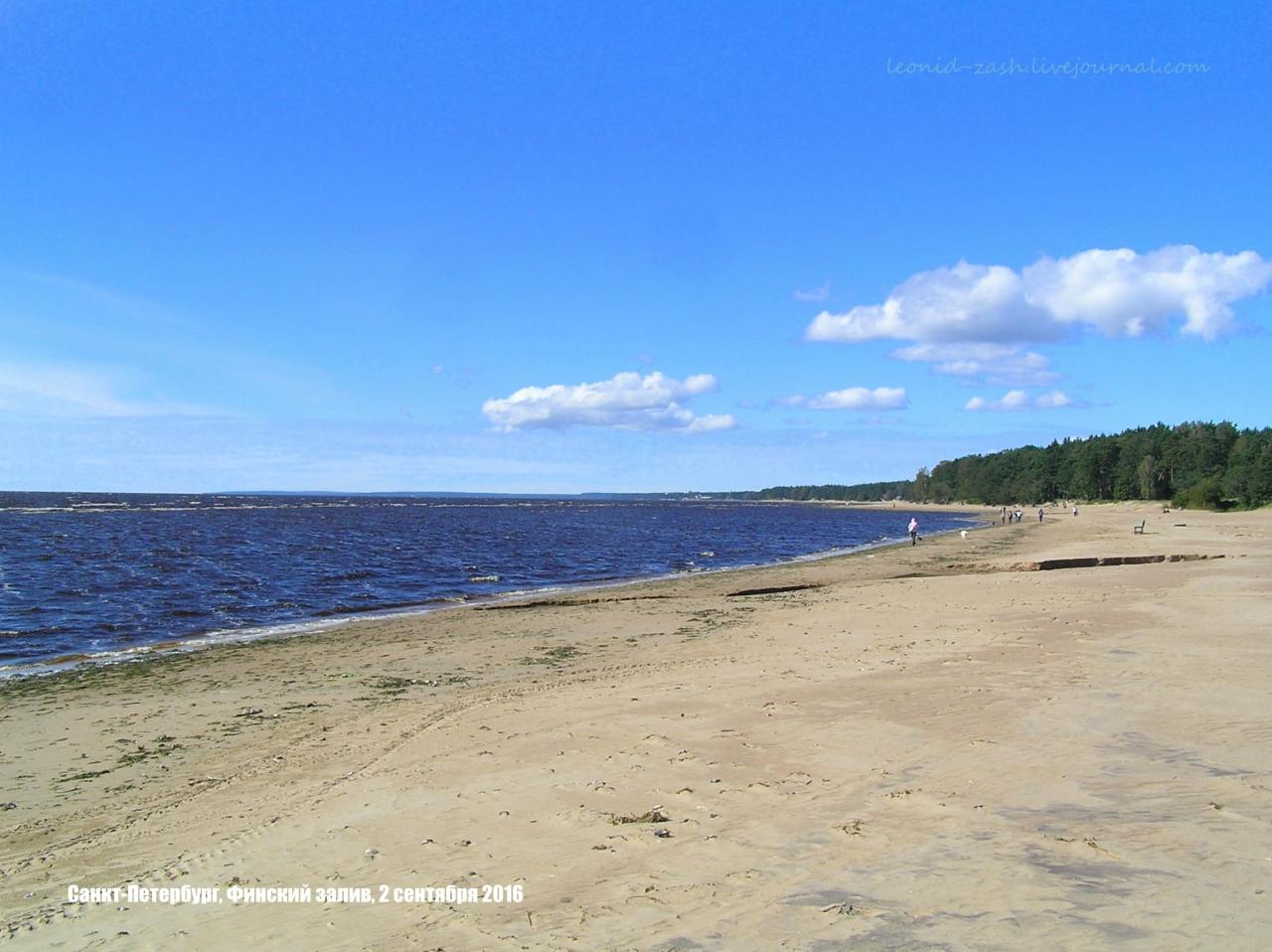 Финский залив 63.JPG