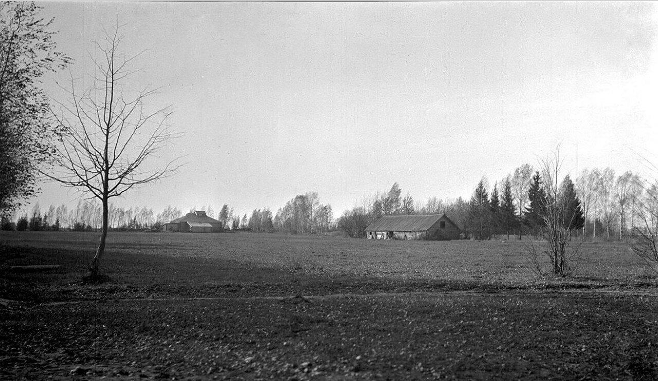 Окрестности Рыбинска. Поле и риги в деревне Переборы. 1917