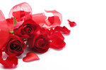 Roses_White_background_Three_3_Red_Heart_Petals_517539_1280x853.jpg