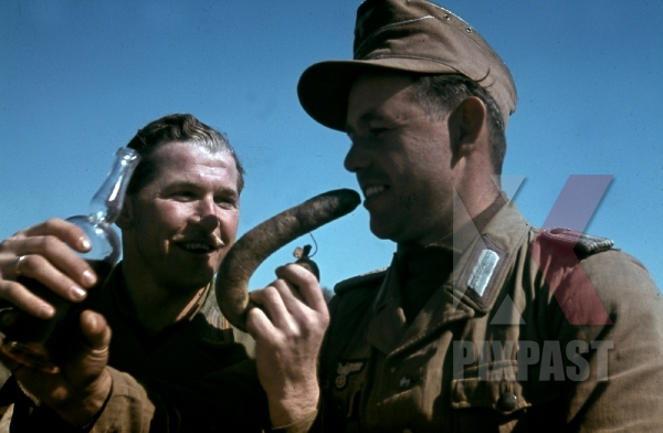 stock-photo-german-war-photographer-fritz-moosmgvller-eats-german-sausage-in-tunisia-1942--90th-light-infantry-division-12447.jpg